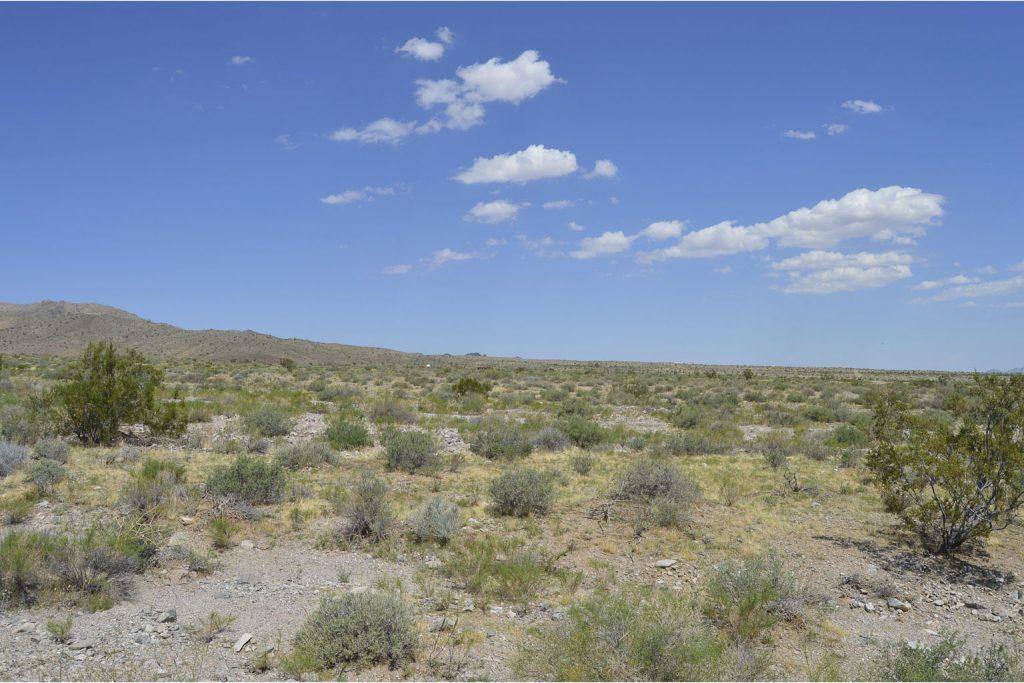 Dolan Springs AZ