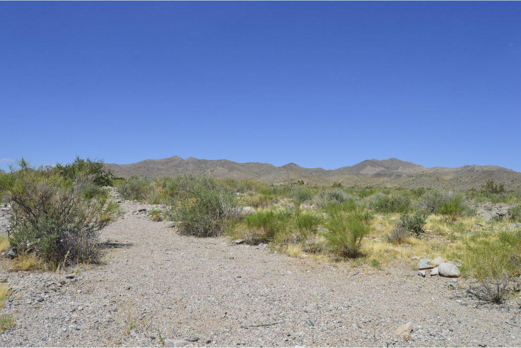 Dolan Springs AZ_1