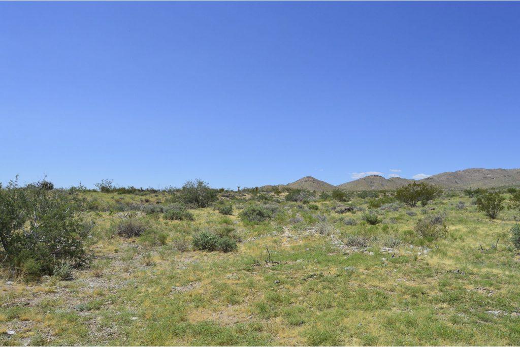Dolan Springs AZ_11