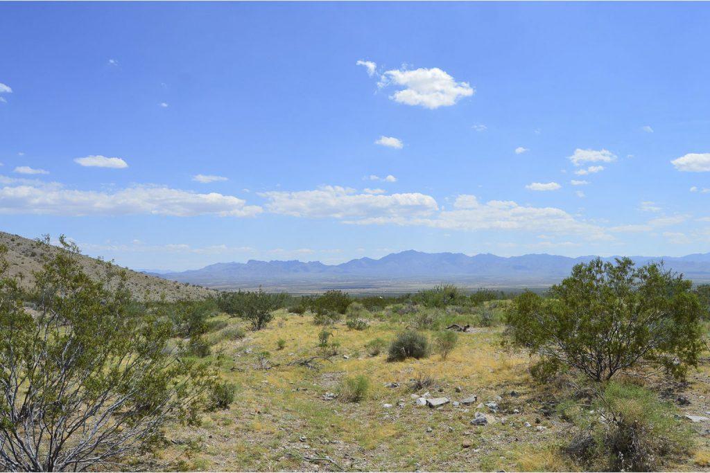 Dolan Springs AZ_13