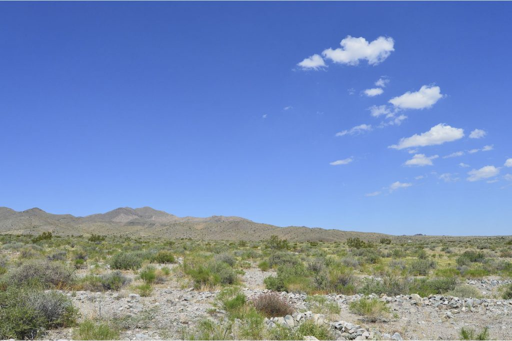 Dolan Springs AZ_2