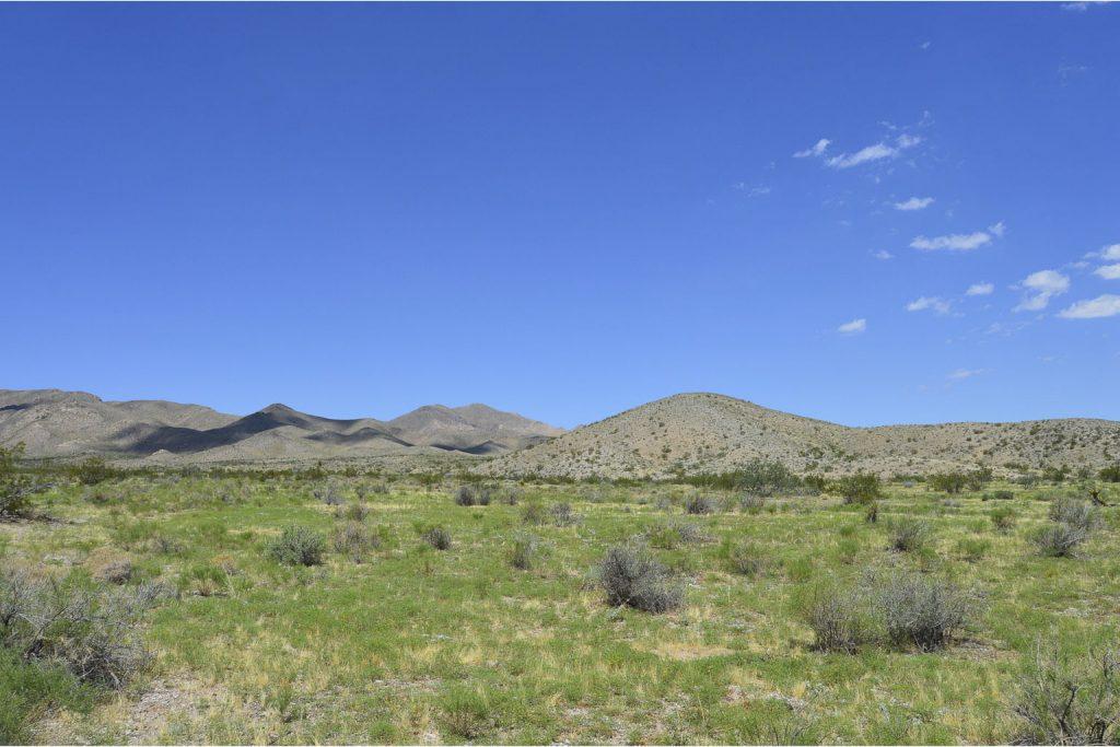 Dolan Springs AZ_3