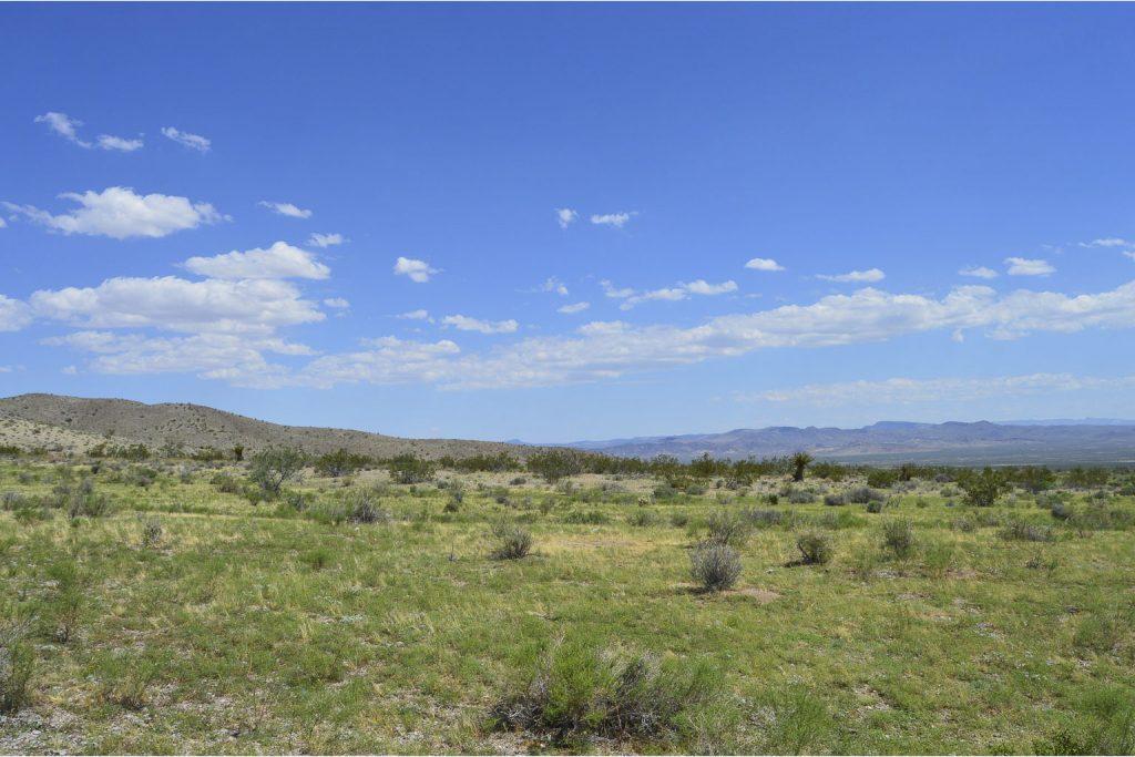 Dolan Springs AZ_4