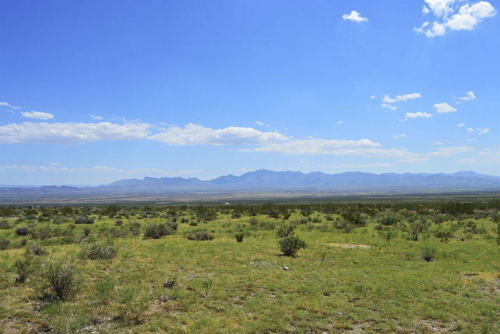 Dolan Springs AZ_6