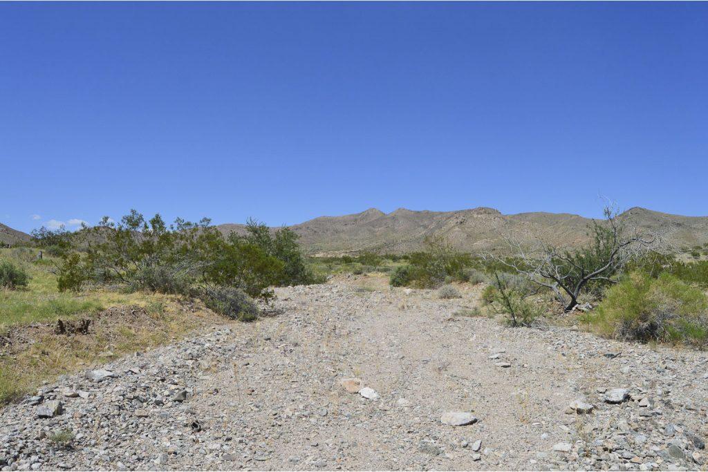 Dolan Springs AZ_7