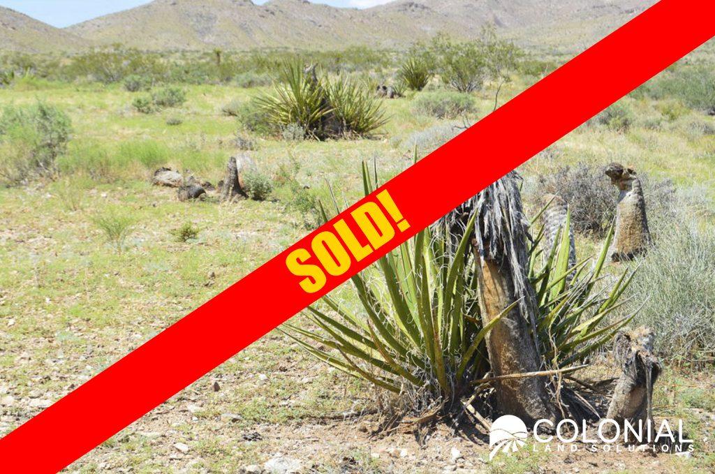 Dolan-Springs-AZ_7_Sold