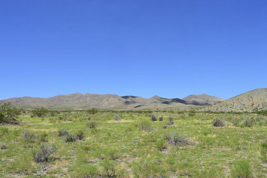 Dolan Springs AZ_8