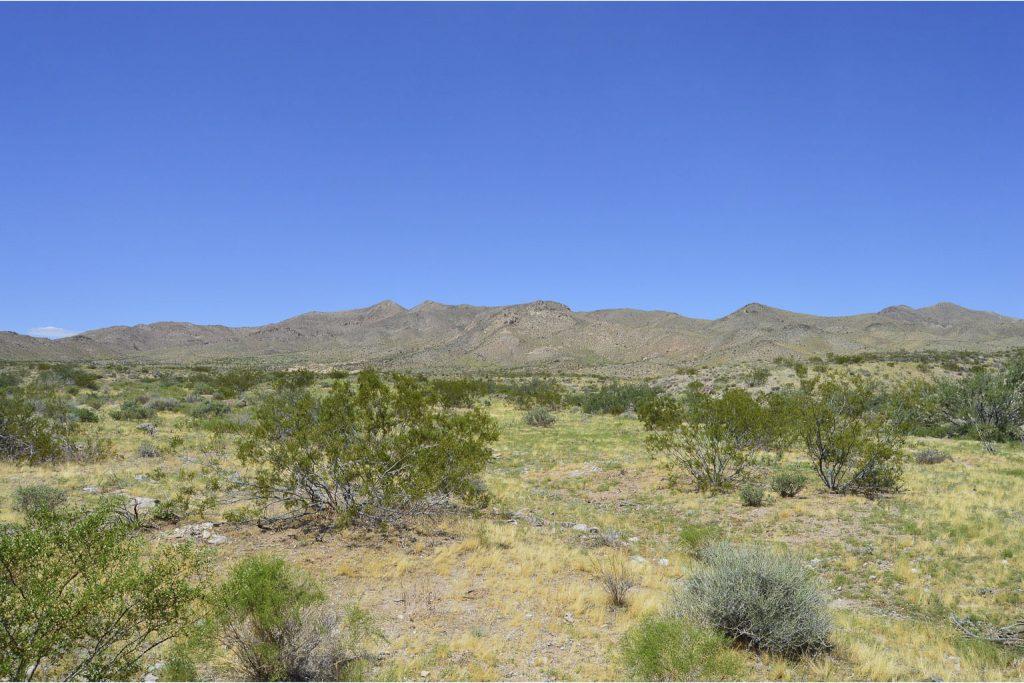 Dolan Springs AZ_9