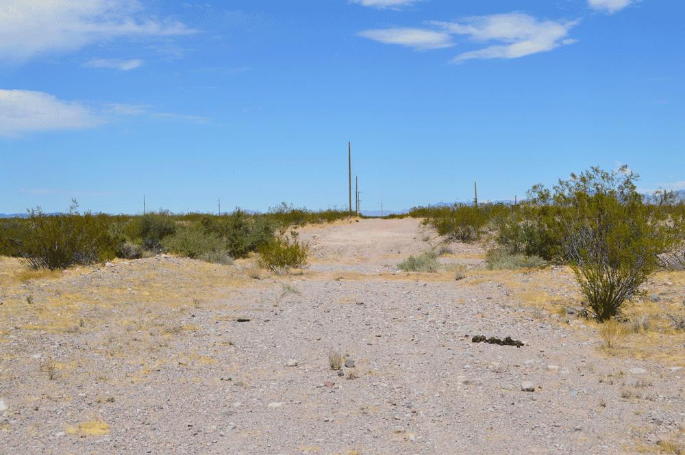 Signal-Road-(2)