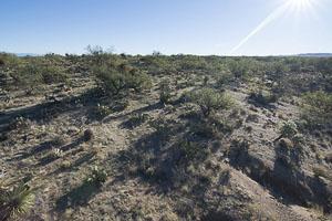 Tucson AZ LandFACING_EAST_-_ELEVATED2