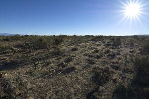 Tucson AZ LandFACING_EAST_-_SE_-_ELEVATED5