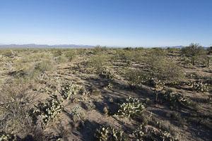 Tucson AZ LandFACING_NORTH_-_ELEVATED6