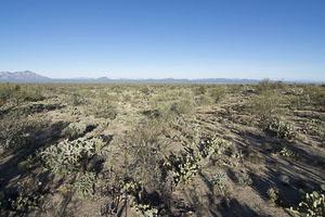 Tucson AZ LandFACING_NORTH_-_NW_-_ELEVATED7
