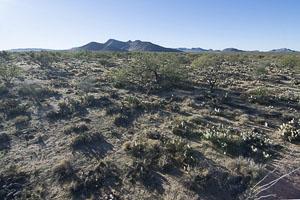 Tucson AZ LandFACING_SOUTH_-_ELEVATED9
