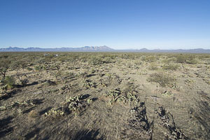 Tucson AZ LandFACING_WEST_-_ELEVATED11