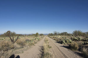 Tucson AZ LandMORTON_AVE_FACING_NORTH___JOHN_AVE12