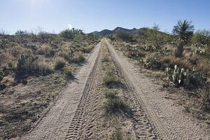 Tucson AZ LandMORTON_AVE_FACING_SOUTH___JOHN_AVE13