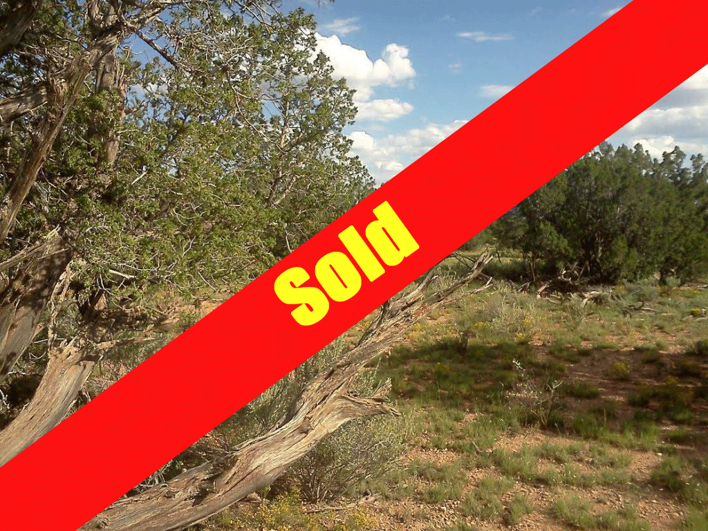sold-banner-1-1024x768